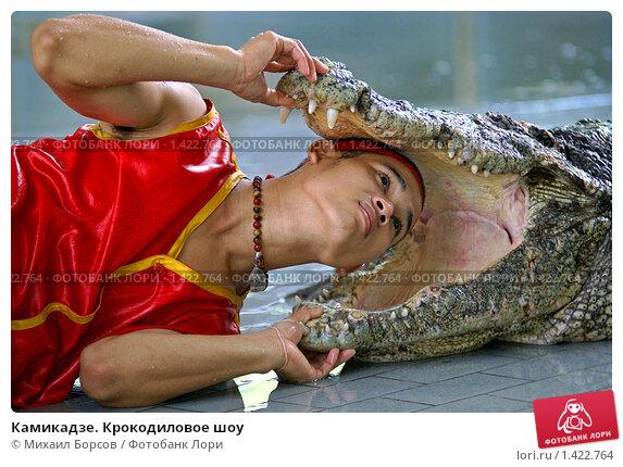 Камикадзе. Крокодиловое шоу, фото № 1422764, снято 27 марта 2007 г. (c) Михаил Борсов / Фотобанк Лори