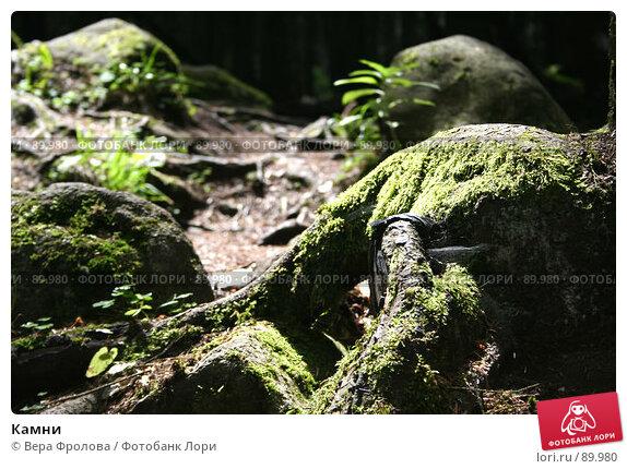 Камни, фото № 89980, снято 4 августа 2007 г. (c) Вера Фролова / Фотобанк Лори