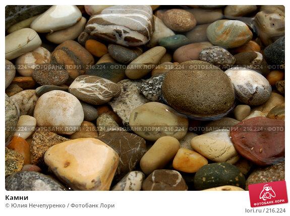 Камни, фото № 216224, снято 7 сентября 2007 г. (c) Юлия Нечепуренко / Фотобанк Лори