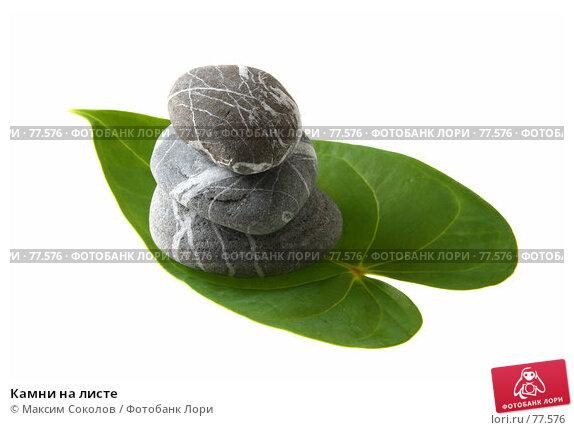 Купить «Камни на листе», фото № 77576, снято 24 июля 2007 г. (c) Максим Соколов / Фотобанк Лори