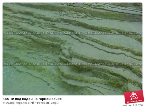 Камни под водой на горной речке, фото № 219236, снято 25 июля 2007 г. (c) Федор Королевский / Фотобанк Лори