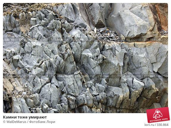 Камни тоже умирают, фото № 330864, снято 12 июня 2008 г. (c) WalDeMarus / Фотобанк Лори