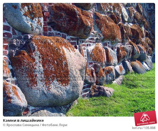 Камни в лишайнике, фото № 135008, снято 16 августа 2007 г. (c) Ярослава Синицына / Фотобанк Лори