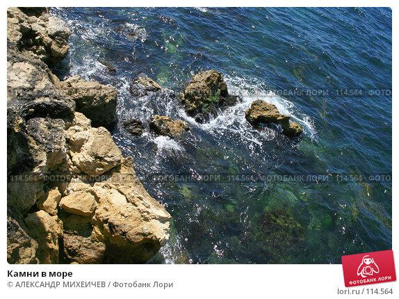 Купить «Камни в море», фото № 114564, снято 21 августа 2007 г. (c) АЛЕКСАНДР МИХЕИЧЕВ / Фотобанк Лори