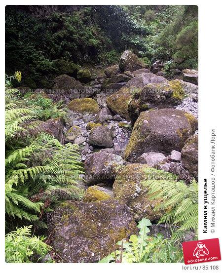 Камни в ущелье, эксклюзивное фото № 85108, снято 2 августа 2007 г. (c) Михаил Карташов / Фотобанк Лори
