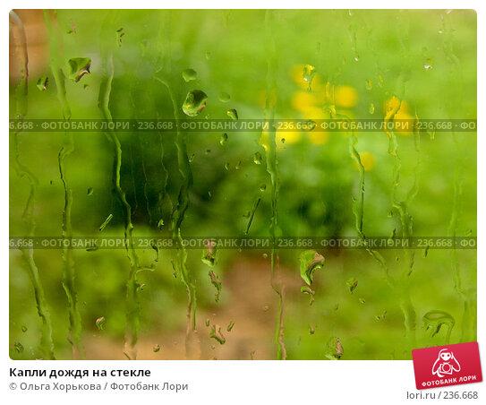 Купить «Капли дождя на стекле», фото № 236668, снято 24 апреля 2018 г. (c) Ольга Хорькова / Фотобанк Лори