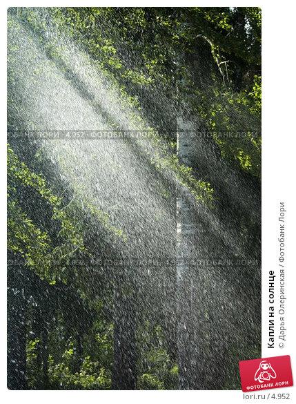 Капли на солнце, фото № 4952, снято 19 июня 2005 г. (c) Дарья Олеринская / Фотобанк Лори
