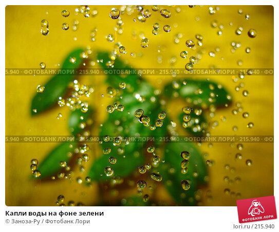 Капли воды на фоне зелени, фото № 215940, снято 2 марта 2008 г. (c) Заноза-Ру / Фотобанк Лори