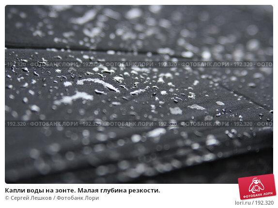 Купить «Капли воды на зонте. Малая глубина резкости.», фото № 192320, снято 30 июля 2007 г. (c) Сергей Лешков / Фотобанк Лори