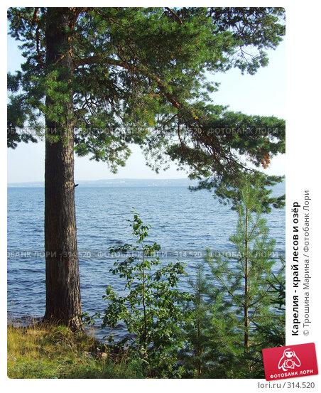 Карелия - край лесов и озёр, фото № 314520, снято 15 августа 2007 г. (c) Трошина Марина / Фотобанк Лори