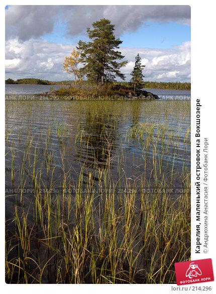 Купить «Карелия, маленький островок на Вокшозере», фото № 214296, снято 16 сентября 2007 г. (c) Андрюхина Анастасия / Фотобанк Лори