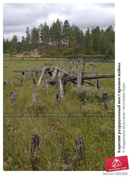 Карелия разрушенный мост времен войны, фото № 329924, снято 27 августа 2007 г. (c) Андрюхина Анастасия / Фотобанк Лори