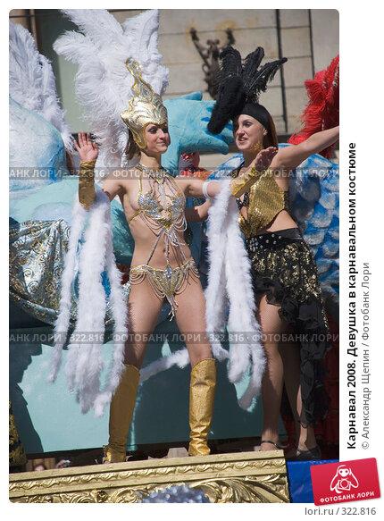 Карнавал 2008. Девушка в карнавальном костюме, эксклюзивное фото № 322816, снято 24 мая 2008 г. (c) Александр Щепин / Фотобанк Лори