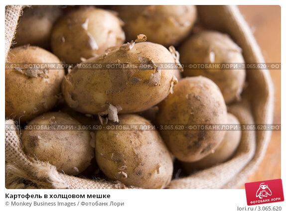 Купить «Картофель в холщовом мешке», фото № 3065620, снято 24 июля 2007 г. (c) Monkey Business Images / Фотобанк Лори