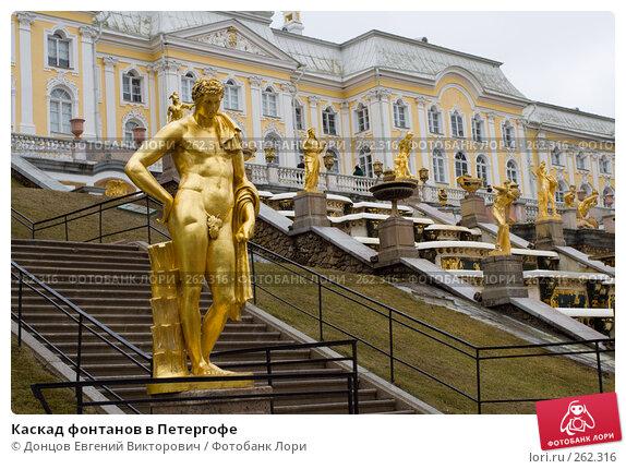 Купить «Каскад фонтанов в Петергофе», фото № 262316, снято 16 апреля 2008 г. (c) Донцов Евгений Викторович / Фотобанк Лори