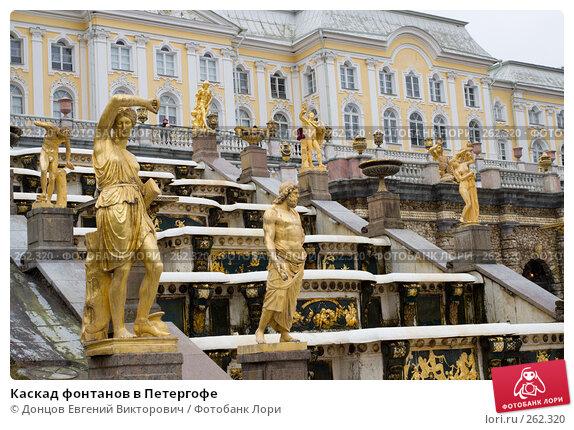 Каскад фонтанов в Петергофе, фото № 262320, снято 16 апреля 2008 г. (c) Донцов Евгений Викторович / Фотобанк Лори