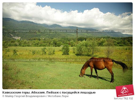 Кавказские горы. Абхазия. Пейзаж с пасущейся лошадью, фото № 762132, снято 15 сентября 2008 г. (c) Майер Георгий Владимирович / Фотобанк Лори
