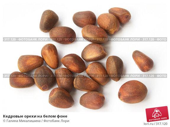 Кедровые орехи на белом фоне, фото № 317120, снято 22 мая 2005 г. (c) Галина Михалишина / Фотобанк Лори