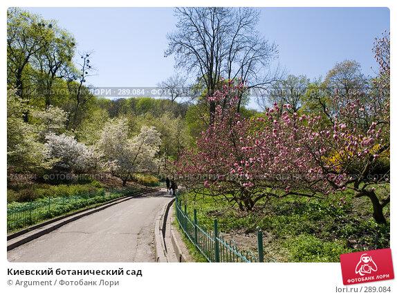 Киевский ботанический сад, фото № 289084, снято 24 апреля 2008 г. (c) Argument / Фотобанк Лори