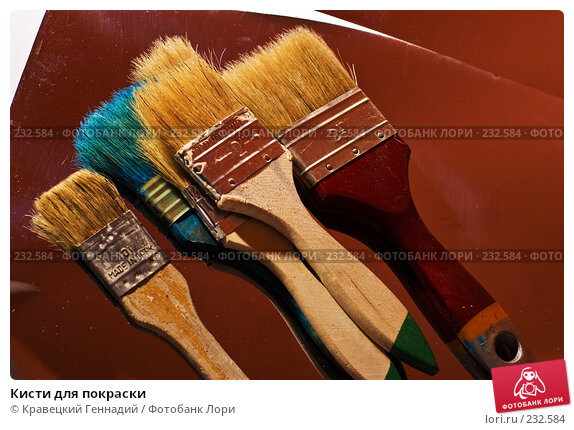 Купить «Кисти для покраски», фото № 232584, снято 9 октября 2005 г. (c) Кравецкий Геннадий / Фотобанк Лори