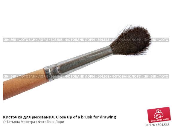 Кисточка для рисования. Close up of a brush for drawing, фото № 304568, снято 18 апреля 2008 г. (c) Татьяна Макотра / Фотобанк Лори