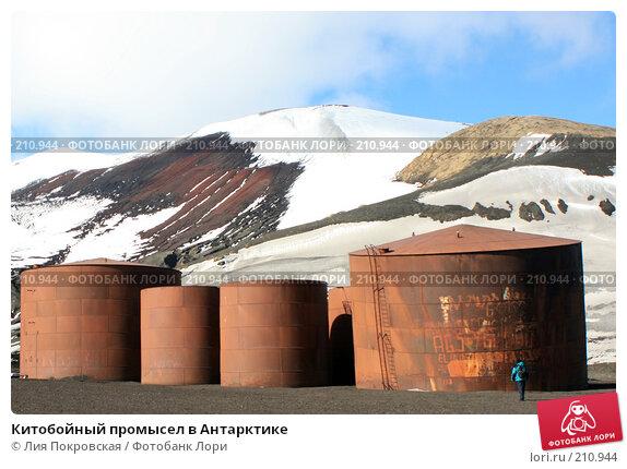Китобойный промысел в Антарктике, фото № 210944, снято 11 января 2008 г. (c) Лия Покровская / Фотобанк Лори