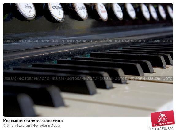 Клавиши старого клавесина, фото № 338820, снято 26 июня 2008 г. (c) Илья Телегин / Фотобанк Лори