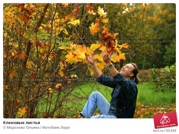 Кленовые листья, фото № 53416, снято 3 октября 2005 г. (c) Морозова Татьяна / Фотобанк Лори