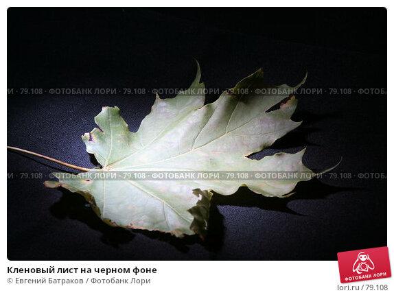 Кленовый лист на черном фоне, фото № 79108, снято 14 августа 2007 г. (c) Евгений Батраков / Фотобанк Лори