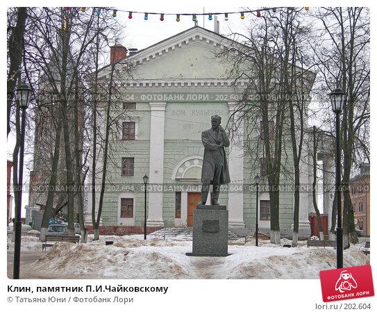 Клин, памятник П.И.Чайковскому, эксклюзивное фото № 202604, снято 9 февраля 2008 г. (c) Татьяна Юни / Фотобанк Лори