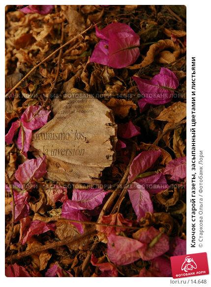 Клочок старой газеты, засыпанный цветами и листьями, фото № 14648, снято 18 июня 2006 г. (c) Старкова Ольга / Фотобанк Лори