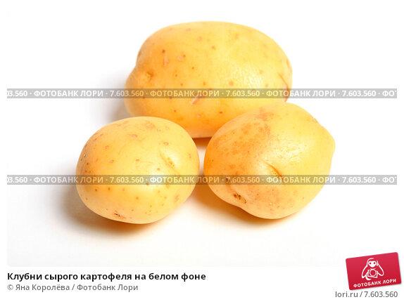 Купить «Клубни сырого картофеля на белом фоне», эксклюзивное фото № 7603560, снято 22 июня 2015 г. (c) Яна Королёва / Фотобанк Лори