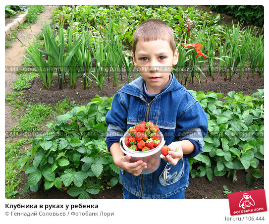 Клубника в руках у ребенка, фото № 106444, снято 15 июля 2007 г. (c) Геннадий Соловьев / Фотобанк Лори