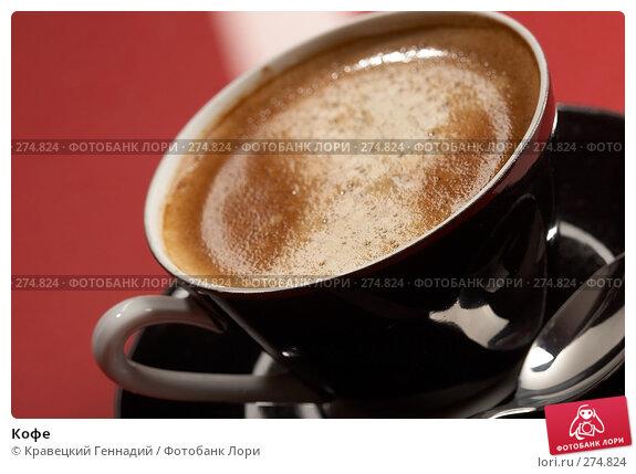 Кофе, фото № 274824, снято 11 декабря 2005 г. (c) Кравецкий Геннадий / Фотобанк Лори