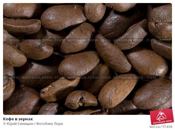 Кофе в зернах, фото № 17616, снято 5 февраля 2007 г. (c) Юрий Синицын / Фотобанк Лори