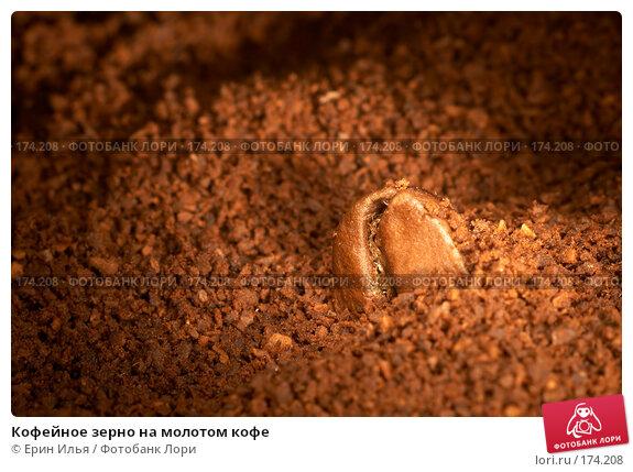 Кофейное зерно на молотом кофе, фото № 174208, снято 13 января 2008 г. (c) Ерин Илья / Фотобанк Лори