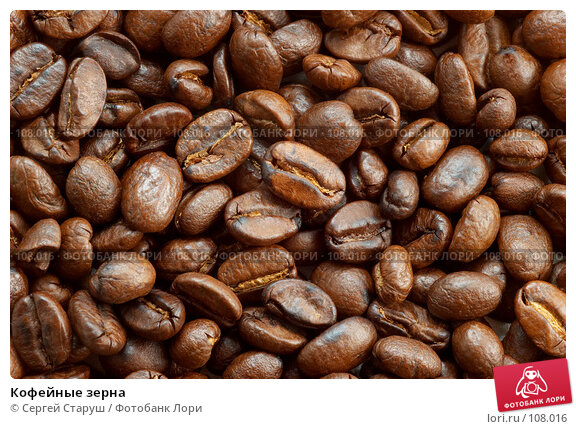 Кофейные зерна, фото № 108016, снято 12 февраля 2007 г. (c) Сергей Старуш / Фотобанк Лори