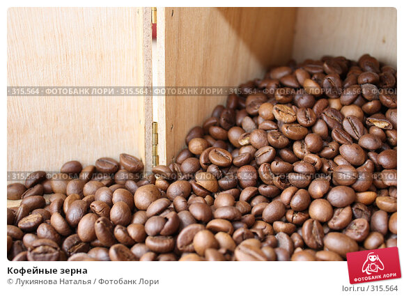 Кофейные зерна, фото № 315564, снято 5 июня 2008 г. (c) Лукиянова Наталья / Фотобанк Лори