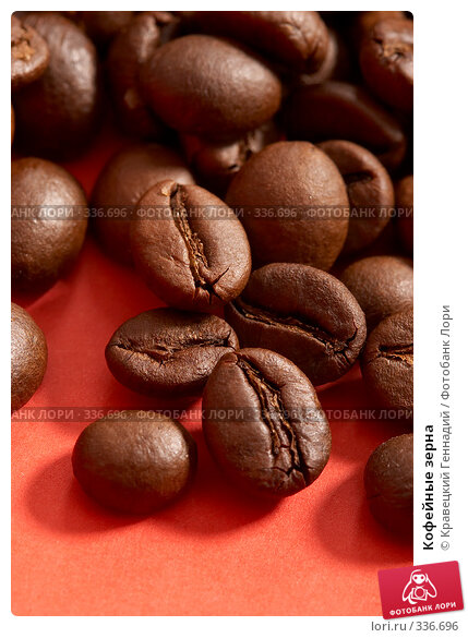 Кофейные зерна, фото № 336696, снято 8 января 2005 г. (c) Кравецкий Геннадий / Фотобанк Лори