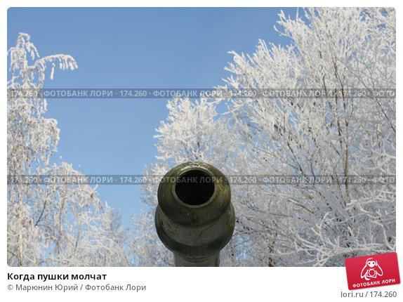 Когда пушки молчат, фото № 174260, снято 27 декабря 2007 г. (c) Марюнин Юрий / Фотобанк Лори