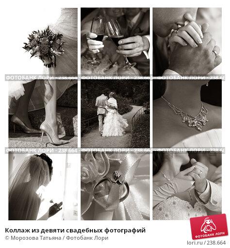 Купить «Коллаж из девяти свадебных фотографий», фото № 238664, снято 22 ноября 2017 г. (c) Морозова Татьяна / Фотобанк Лори
