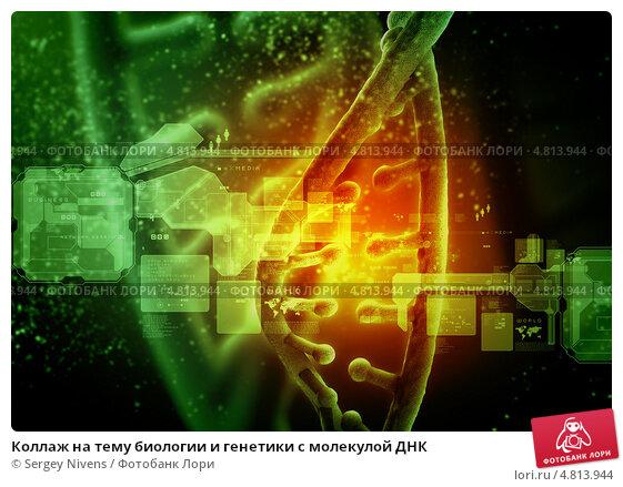 Купить «Коллаж на тему биологии и генетики с молекулой ДНК», фото № 4813944, снято 20 сентября 2019 г. (c) Sergey Nivens / Фотобанк Лори