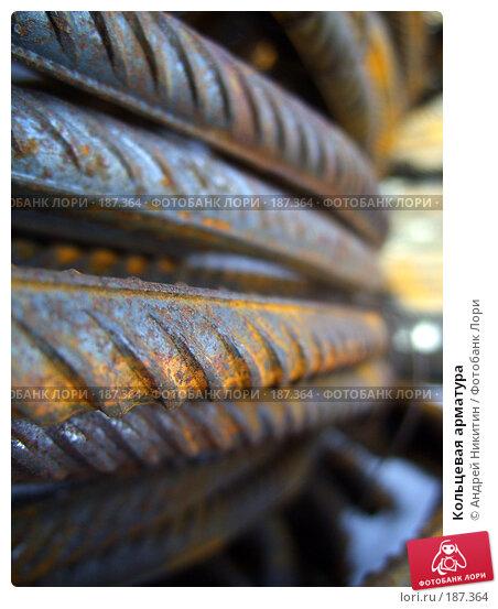 Кольцевая арматура, фото № 187364, снято 26 января 2008 г. (c) Андрей Никитин / Фотобанк Лори