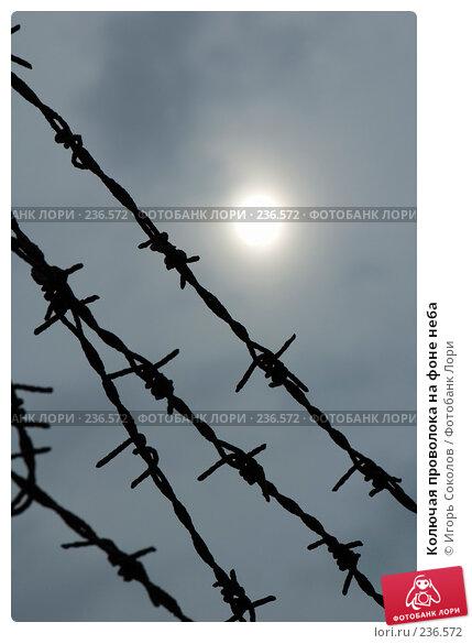 Колючая проволока на фоне неба, фото № 236572, снято 25 марта 2008 г. (c) Игорь Соколов / Фотобанк Лори