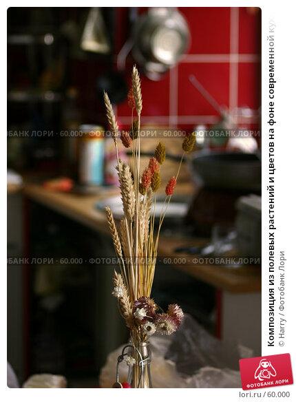 Купить «Композиция из полевых растений и цветов на фоне современной кухни», фото № 60000, снято 31 мая 2007 г. (c) Harry / Фотобанк Лори