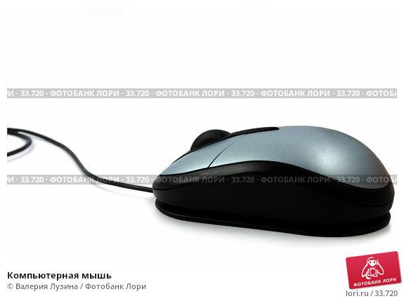 Компьютерная мышь, фото № 33720, снято 18 апреля 2007 г. (c) Валерия Потапова / Фотобанк Лори