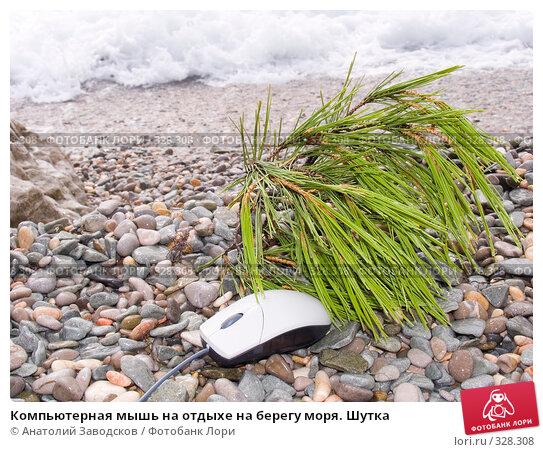 Компьютерная мышь на отдыхе на берегу моря. Шутка, фото № 328308, снято 28 сентября 2006 г. (c) Анатолий Заводсков / Фотобанк Лори