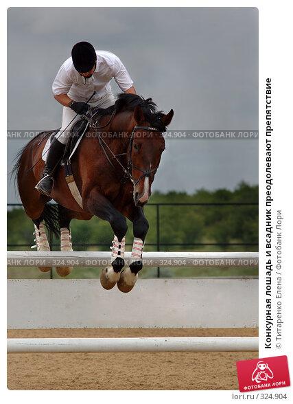 Купить «Конкурная лошадь и всадник преодолевают препятствие», фото № 324904, снято 15 июня 2008 г. (c) Титаренко Елена / Фотобанк Лори