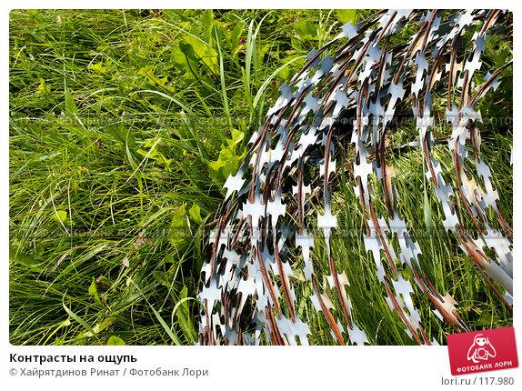 Купить «Контрасты на ощупь», фото № 117980, снято 3 июля 2007 г. (c) Хайрятдинов Ринат / Фотобанк Лори
