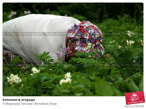 Копание в огороде, фото № 50024, снято 11 июля 2004 г. (c) Морозова Татьяна / Фотобанк Лори